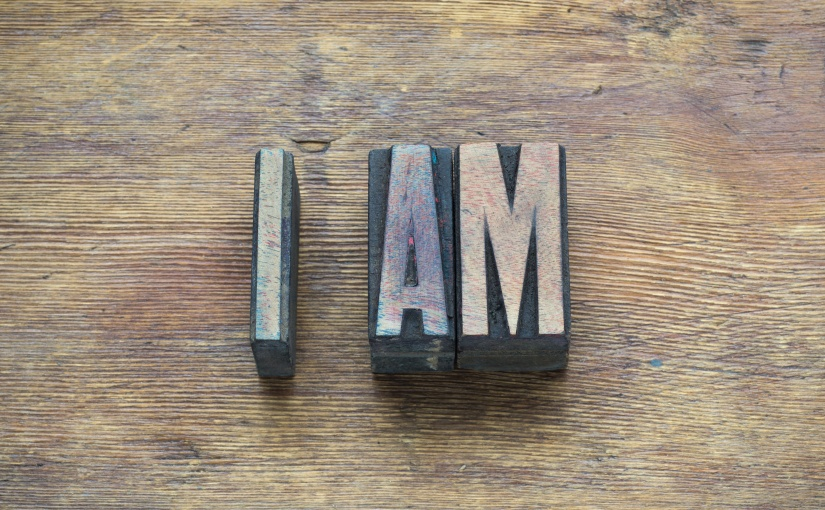 """The 7 """"I AM"""" Statements of Jesus: OT Background & NTMeaning"""