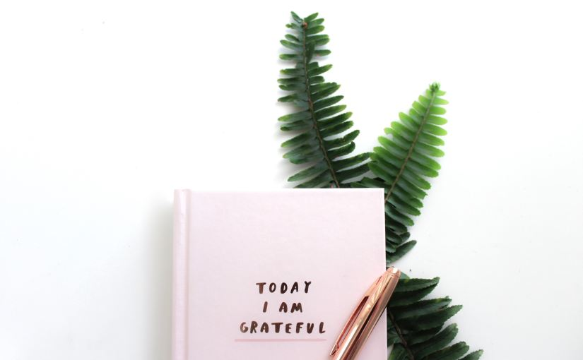 Five Ways David Gave Thanks: November Gratitude Reading Plan (Day 28)